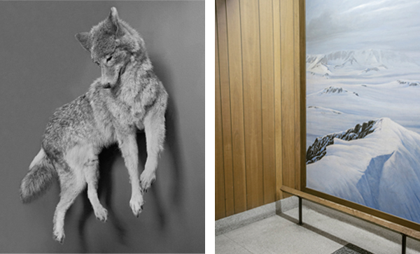 """""""Untitled, 2014"""" and """"Untitled, 2014"""" by Tal Barel (courtesy of the artist)"""