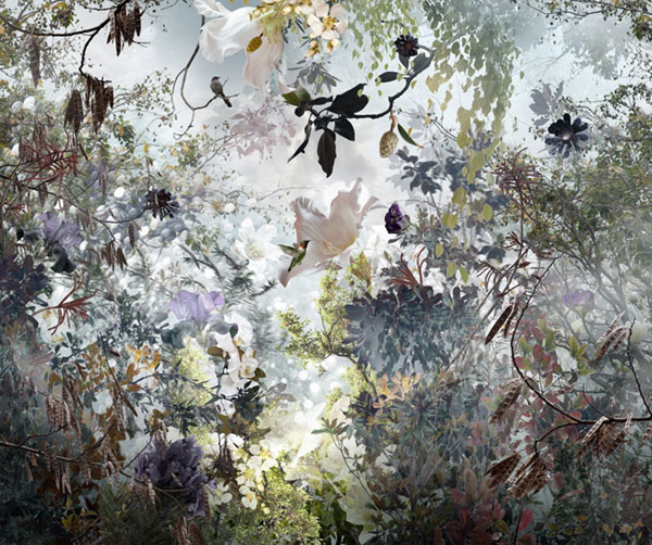 """Ornatus"", 48""x 57"" C-print on acrylic by Ysabel LeMay (courtesy of the artist and Lanoue Gallery, Boston)"