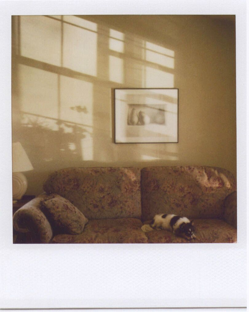 """Ruby at Home – Polaroid, Fort Collins, Colorado, 2007"" in ""Notes From A Quiet Life"" by Robert Benjamin (Radius Books, 2012)."
