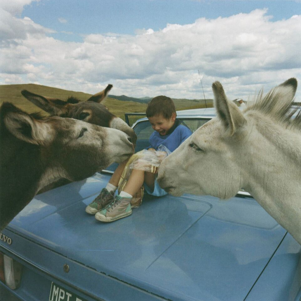 """Walker with the Begging Burros, Custer State Park, South Dakota, 1994"" in ""Notes From A Quiet Life"" by Robert Benjamin (Radius Books, 2012)."