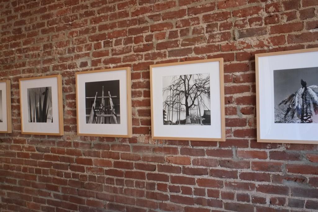 "Installation view of ""Naturata"" exhibit of Graciela Iturbide's landscapes at Neal Guma Fine Art in Charlottesville, Virginia through July 22, 2016."