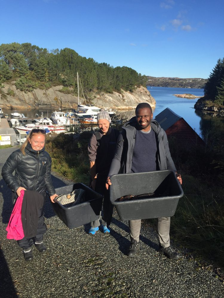 fishing crab and lobster in norway