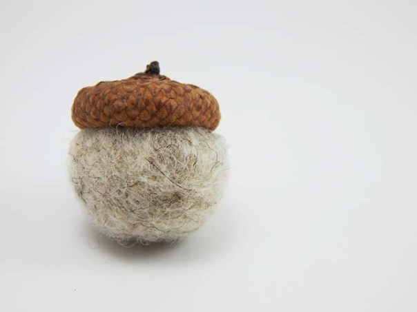 Finished acorn