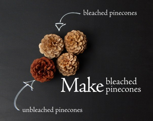Make bleached pinecones
