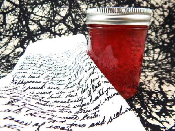 Apple jelly and napkins