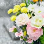 お彼岸にお墓にお供えする花のマナーと春と秋の花の種類とは