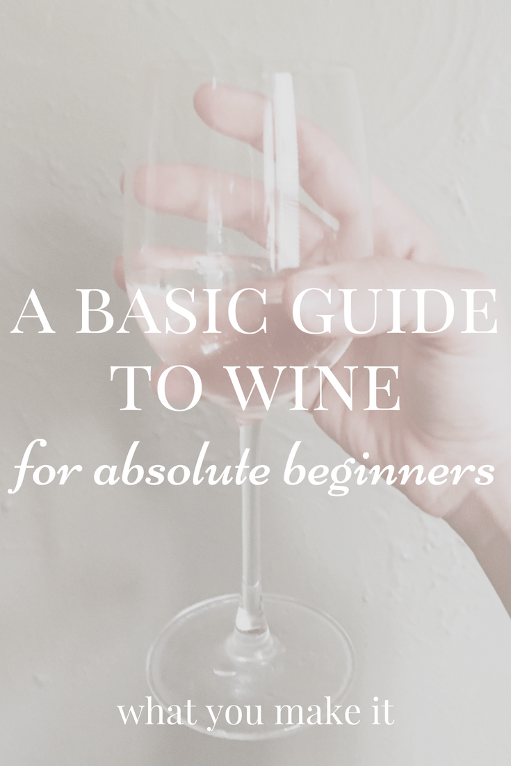 basics about wine - wine for beginners - types of wine - how to taste wine - how to pair wine - What You Make It blog