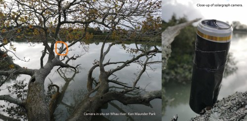 Ken Maunder Park. Camera in situ and close up. J Tomlin