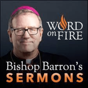 Bishop Barron Sermons