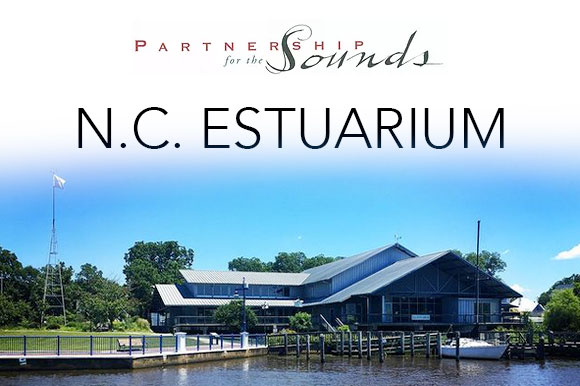 Estuarium