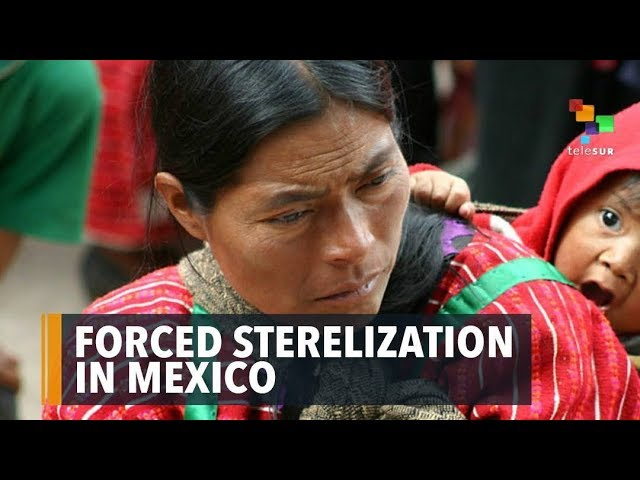 Forced Sterilization To Indigenous Women In Mexico