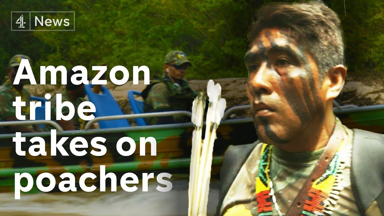 Modern Technology Helps Amazon Tribe Combat Illegal Poaching