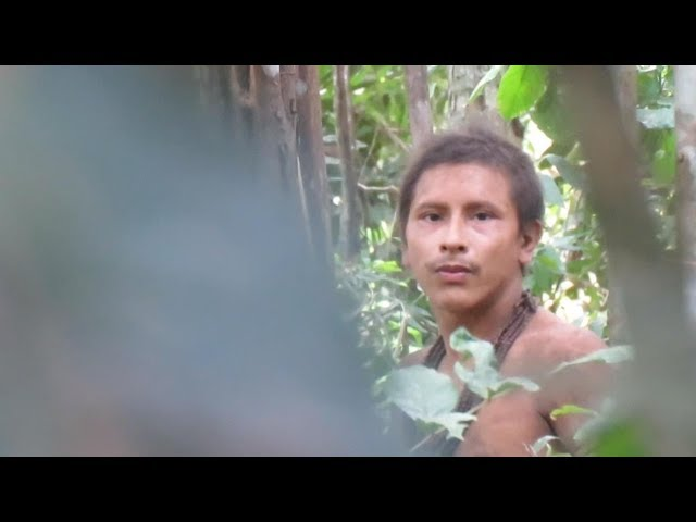 Uncontacted Amazon Tribe Caught On Tape In Brazil