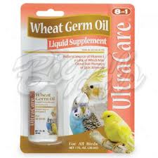 Wheat Germ for Slimness