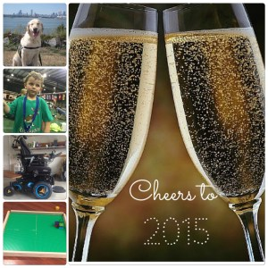Cheers 2015!
