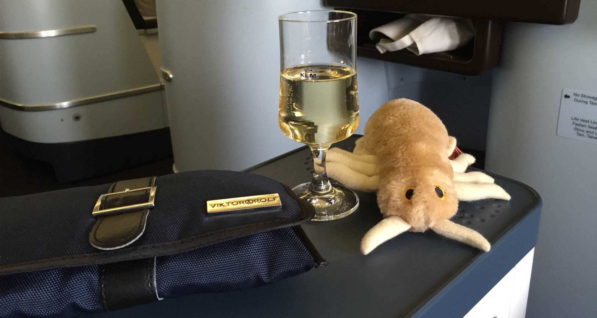 Stuffed louse next to glass of champagne on airplane tray table in business class.