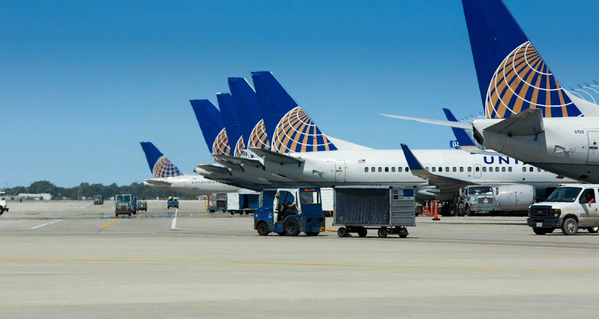 Multiple United Airlines jets parked at airport gates.