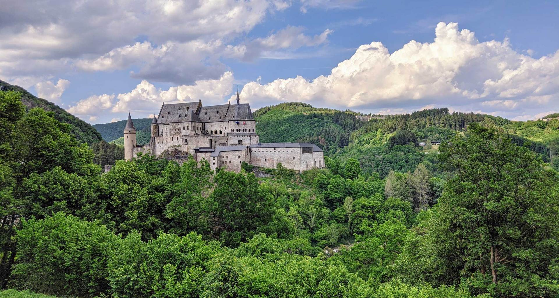 Castle amid a dense forest.