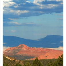 Ancient History in Rock and Pine (Dixie Forest, UT)