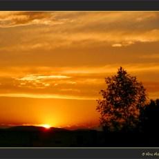 Meditating on Sunset