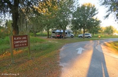 View of entrance to Northern Loop (Alafia Lake Loop) sites #13-30. Site #13 on immediate left.