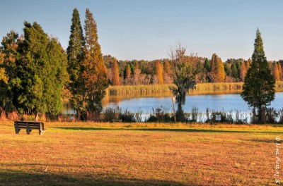 A lovely fall day at Alafia State Park