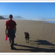 SP Campground Review – Carl G.Washburne State Park, Florence, OR