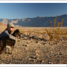 Boondocking Site Review – Rockhouse Canyon Road, Clark Dry Lake, Borrego Springs, CA