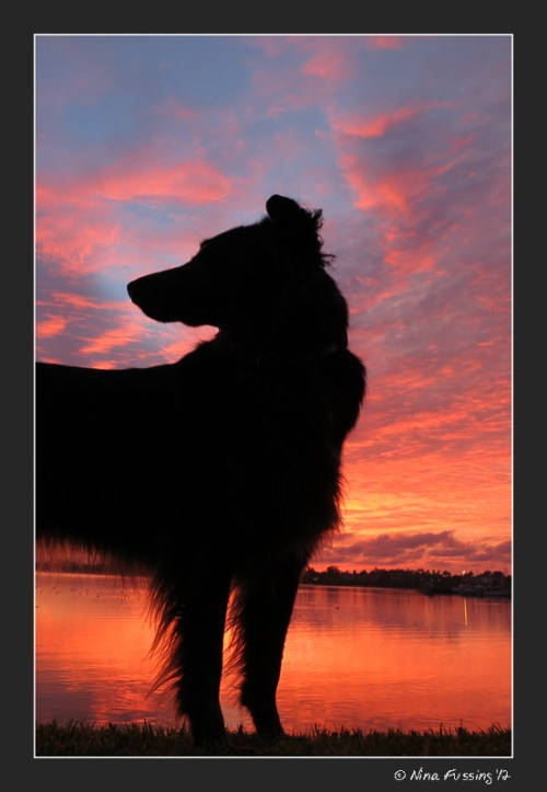 C-20121225 Sunset (8) (JPG)