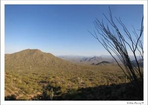 Desert views at Usery