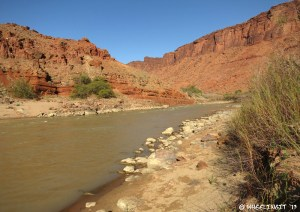 View of Colorado river from the beach area