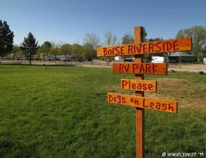 The green pet area at Boise Riverside RV Park