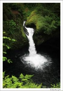 Gorgeous Punchbowl Falls