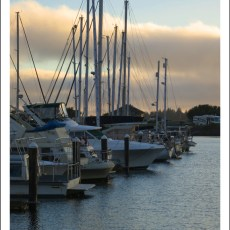 The Best Kept Secret On The OR Coast? Winchester Bay, OR