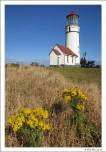 Cape Blanco on a perfect day
