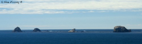 Distant sea stacks as seen from the cape