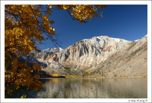 Gorgeous Convict Lake lined with aspen yellow