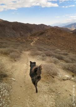 Hiking the ridge at Whitewater