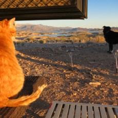 Shiny New Friends, Shiny New Boondocking Spot – Lake Mead, NV
