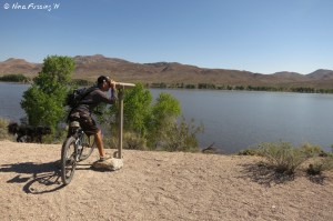 Looking for birds along the hike/bike trail