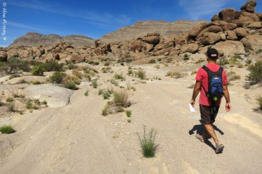 Walking Crystal Wash in search of rock art!