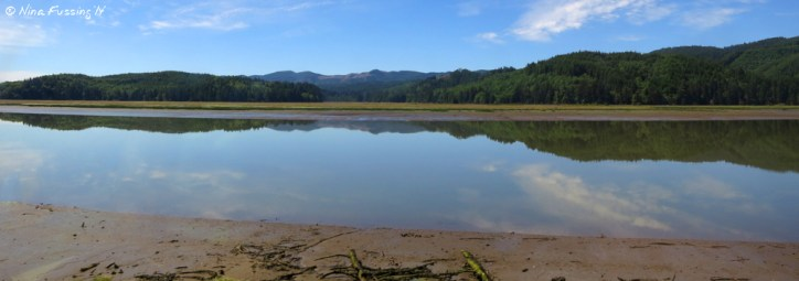 Reflections on Willapa Bay