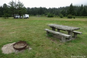 "View of one of ""sites"" with picnic table and fire-pit in the dispersed camping area"