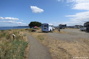 "View further back in RV park. RV on left is in ""prime"" site #332"