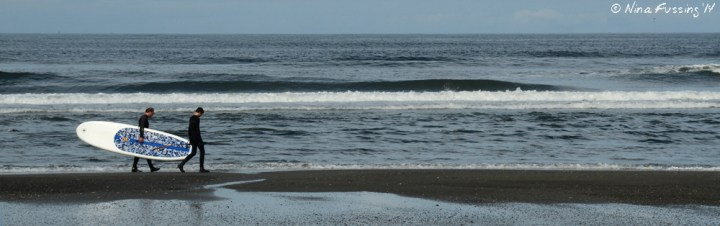 Surfers out for a paddle