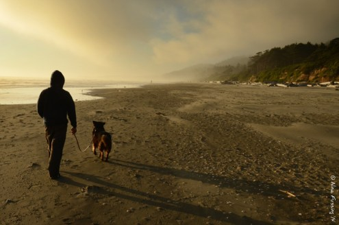 Walking the beach with doggie as the fog lifts