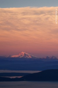 "Last alpenglow on Mount Baker in our ""back yard"""