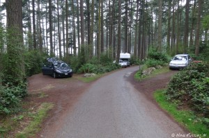 View down lower loop. Car in site 128 on right. #127 on left. These sites are VERY small.