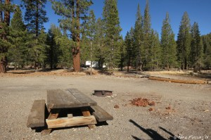 Typical site with picnic table and fire-pit