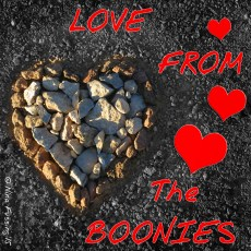Love From The Boonies